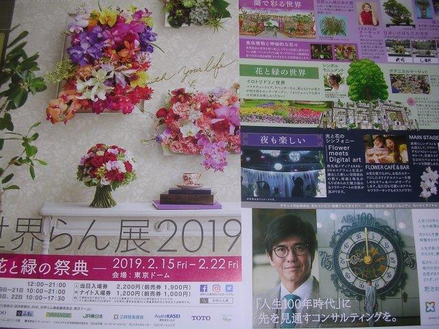 世界らん展2019 東京ドームの画像